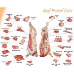 Poster - Beef Primal Cuts